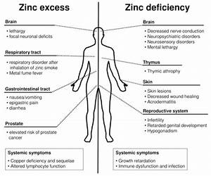 Vitamin And Mineral Deficiency Symptoms Chart Health Effects Of Zinc Excess Deficiency Zinc Deficiency