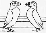 Colouring Puffins Ailsa Coloring Sheet Adults Simple sketch template
