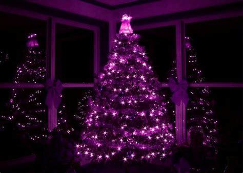 79 best purple images on purple decor and merry - Black Christmas Tree With Purple Lights