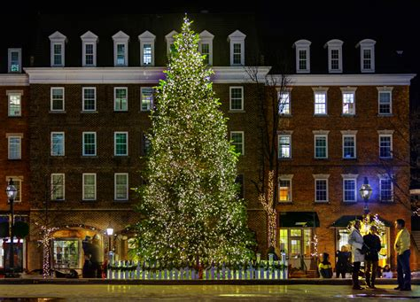 christmas tree alexandria va things to do in alexandria this season 3021