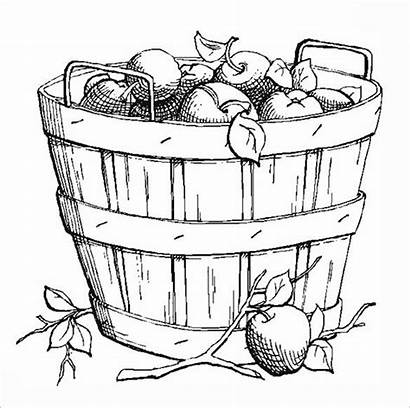 Coloring Fall Pages Autumn Basket Apple Colouring