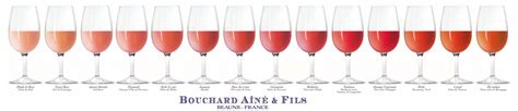 wine color wine color complete visual guide social vignerons
