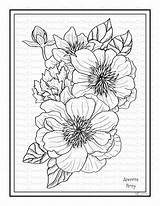 Peony Coloring Printable Anemone sketch template