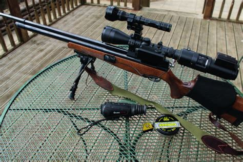 controlling rabbits  firearms certificated air rifles