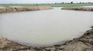 Drought proofing: Farm ponds turn out to be game-changer ...