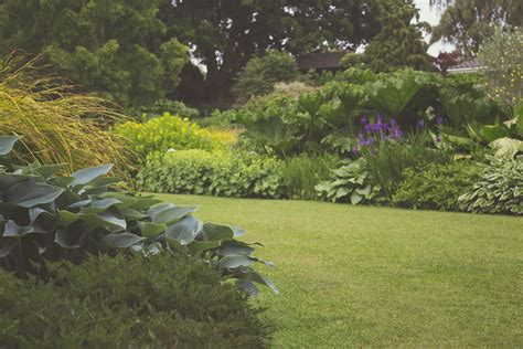 Free Garden Image by Webster Groves S Garden Club Garden Club