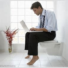 17% Of New Yorkers Work While On The Toilet  Daily Mail Online