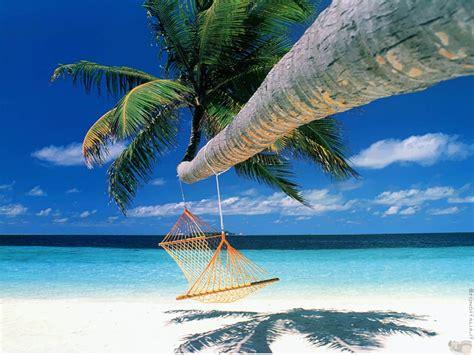 Bora Bora Wishful Shrinking