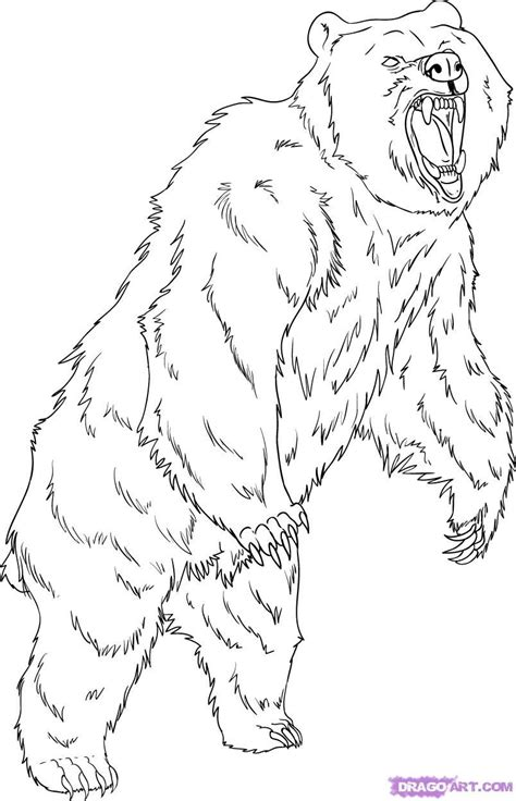 grizzly bear coloring pages   draw  grizzly bear