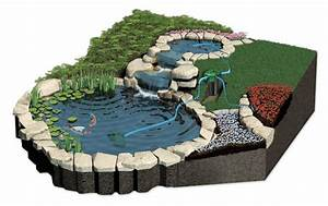 Diagrams Of Plant Filtering Pond