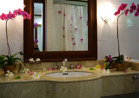 images of bathroom decorating ideas a more creative bathroom simple bathroom decor ideas