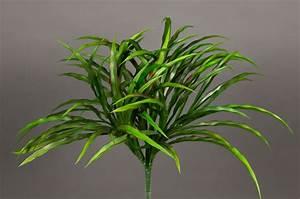 Orchideen Ohne Topf : dracenabusch 36cm gr n rot ohne topf yf kunstpflanzen grasbusch k nstliches gras dekogras ~ Eleganceandgraceweddings.com Haus und Dekorationen