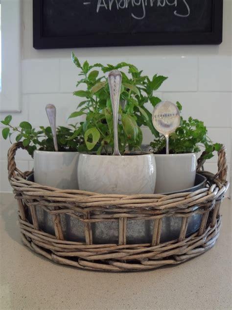 kitchen herb garden ideas  pics