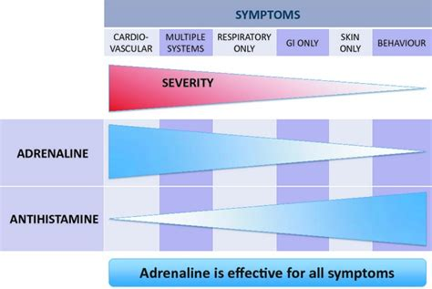 anaphylaxis guidelines   european academy