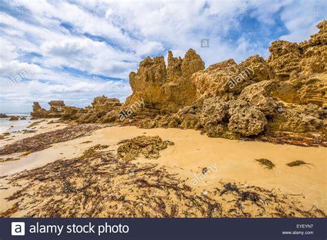 Anglesea Australia Stock Photos