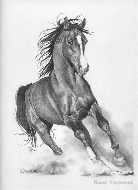 pencil drawings  horses horse pencil drawings horses