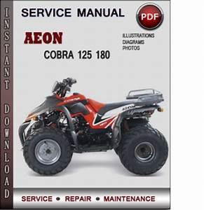 Aeon Cobra 125 180 Aeon Cobra 125 180 Factory Service Repair Manual
