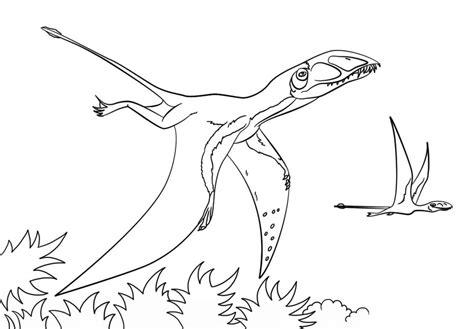 Pterodactyl Coloring Page - Ofertasvuelo