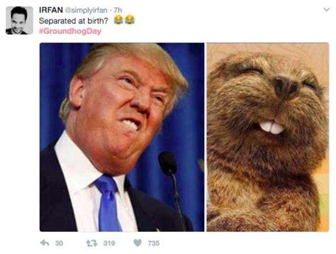 Donald Trump Hair Memes - donald trump hair meme die besten 25 donald trumpf haare meme ideen auf