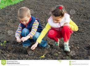 for toddlers two children planting seeds in the field stock