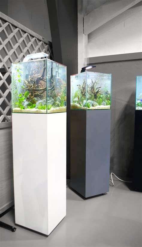 aquariums design 30l nature aquarium poisson aquarium et poissons