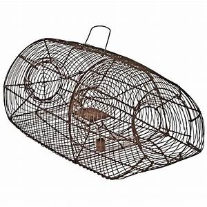 Pigeon Or Quail Recovery Trap