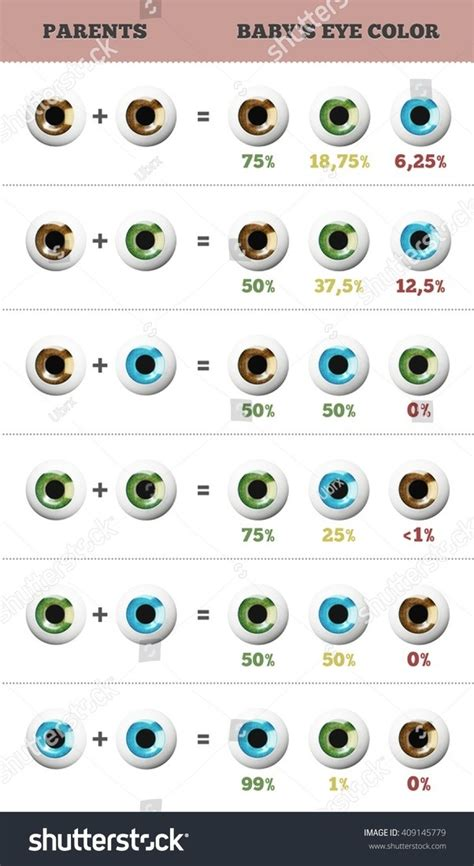 Eye Color Dominance Chart