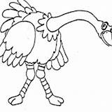 Ostrich Coloring Pages sketch template