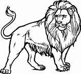 Lion Coloring Realistic Printable Clipart Tamarin Golden Leeuw Kleurplaat Colouring Adults Zoo Drawing Majestic Kleurplaten Topkleurplaat Alcateri sketch template