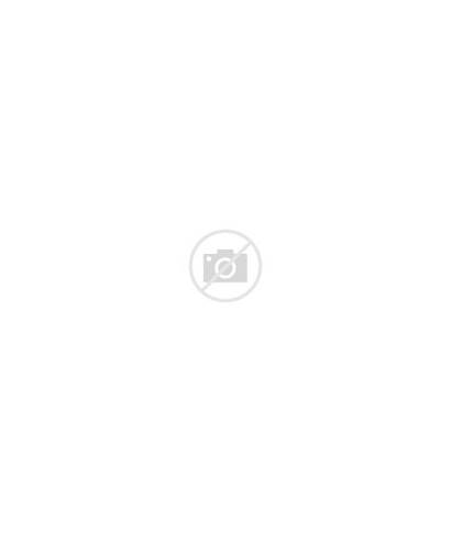 Coloring Terrier West Highland Yorkie Dog Yorkshire