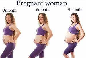 Body Changes During Pregnancy  U2013 My Life As A Doctor
