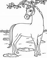 Barbie Coloring Horse Pages Dancer Mini Sheet Topcoloringpages Others sketch template