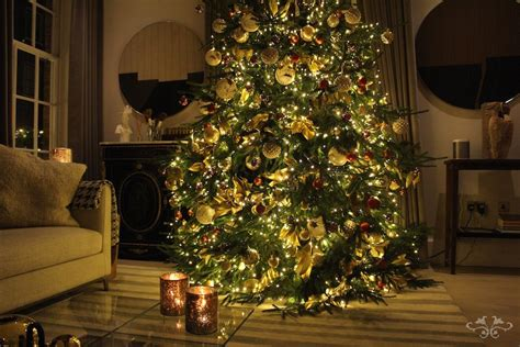 where to find the best christmas trees and christmas tree