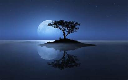 Moon Night Water Lonely Island Tree Nature