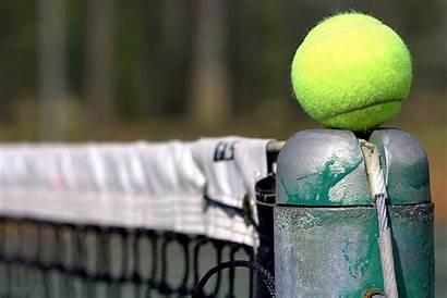 Tennis Wallpapers Ball 1440 Team Sports Vineyard