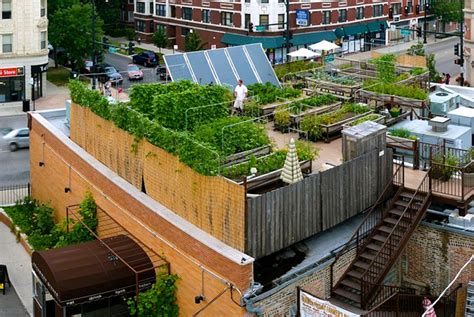 farm to table bistro the coolest garden to table restaurants in chicago make