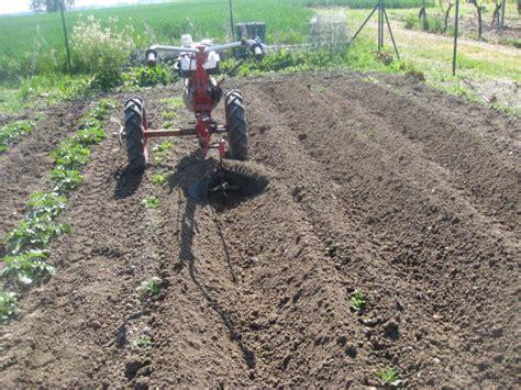 buttage des pommes de terre