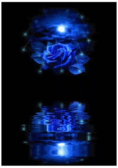 Glitter Graphics Moon Rose Flowers Gifs Animated