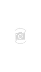 Totem Pole Animal Drawings