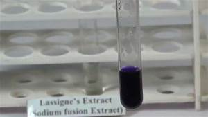 Detection Of Sulphur In An Organic Compound