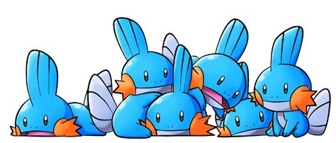 Mudkips By Rooteh On Deviantart