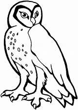 Owl Coloring Printable Animals Template Pattern Owls Stencil Barn Templates Printables Patterns Hoot Cartoon Choretell Stencils Sheknows Animal Popular Activity sketch template