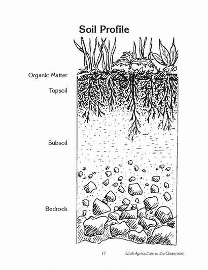 Soil Dirt Layers Unit Template Activity Coloring