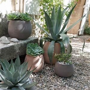 les 25 meilleures idees concernant pots de fleurs sur With idee amenagement exterieur entree maison 18 cactus et plantes grasses exterieur pour un jardin facile