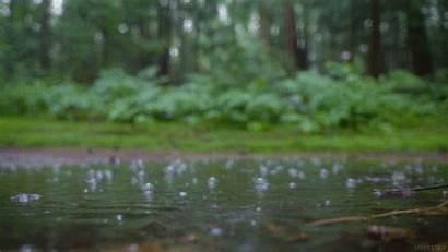 Rain Giphy Pool Stills Living Gifs Tweet