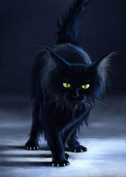 Cat Cats Fuzzy Halloween Witch Serina Were