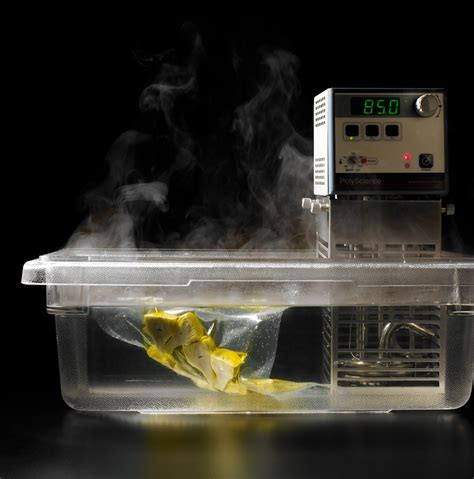 food science sous vide