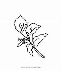 Desenho De Rosas Para Pintar - AZ Dibujos para colorear
