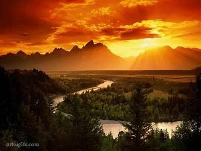 Sunset Nature Morning Tree River Beauty Sunsets