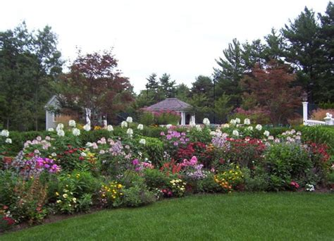 design  colorful flower bed
